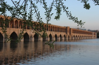 shiraz-1481595_1280